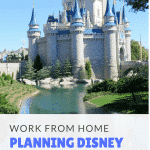 Disney Jobs From Home in the Travel Industry
